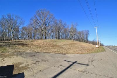 Muskingum County Residential Lots & Land For Sale: 3050 Olde Falls Rd