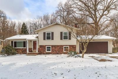 Summit County Single Family Home For Sale: 4598 Commodore Dr