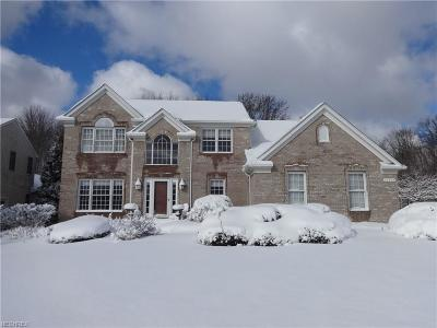 Twinsburg Single Family Home For Sale: 10242 Dayflower Dr