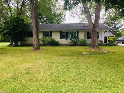Copley Single Family Home For Sale: 1276 North Plainview Dr