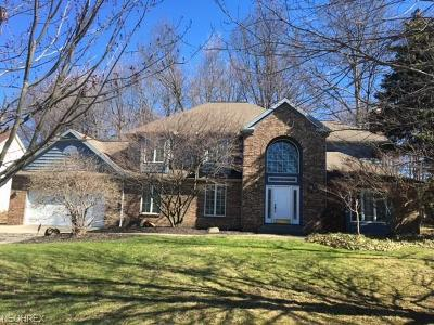 Highland Heights Single Family Home For Sale: 625 Williamsburg Dr