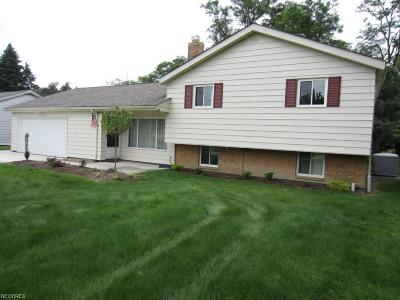 Highland Heights Single Family Home For Sale: 837 Belwood Dr