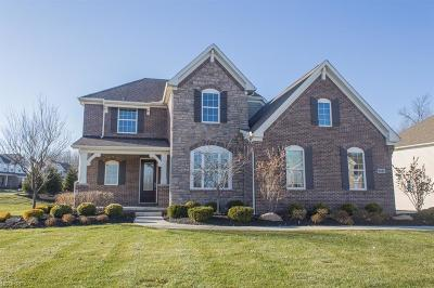 Twinsburg Single Family Home For Sale: 9387 Grace Dr