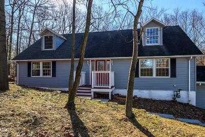 Summit County Single Family Home For Sale: 200 Houghton Rd