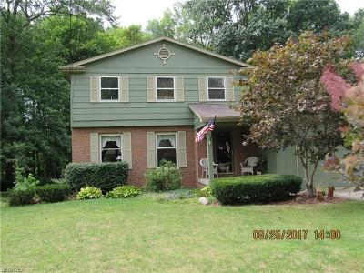 Youngstown Single Family Home For Sale: 569 Oakridge Dr