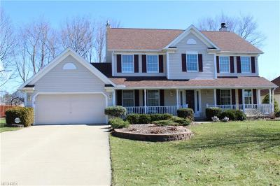 Twinsburg Single Family Home For Sale: 10127 Bissell Dr