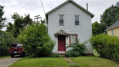 Cleveland Single Family Home For Sale: 7526 Park Ave