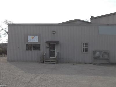Muskingum County Commercial For Sale: 766 B Linden Ave