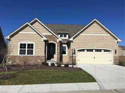 Medina Single Family Home For Sale: 6023 Mint Hill Dr