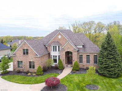 Brecksville, Broadview Heights Single Family Home For Sale: 1481 Summerwood Dr