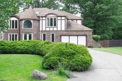 Westlake Single Family Home For Sale: 3818 Willow Run
