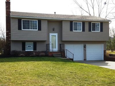 Twinsburg Single Family Home For Sale: 1646 Belfair Dr