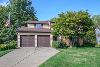Mentor Single Family Home For Sale: 7872 Gallowae Ct