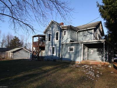 Medina Single Family Home For Sale: 333 East Friendship St