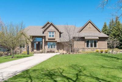 Solon Single Family Home For Sale: 29975 North Park Blvd
