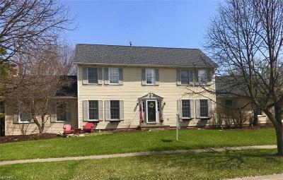 Medina Single Family Home For Sale: 3201 South Park Ln