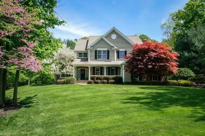 Geauga County Single Family Home For Sale: 413 Reserve Trl