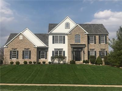 Medina Single Family Home For Sale: 4327 Lakeview Glen Dr