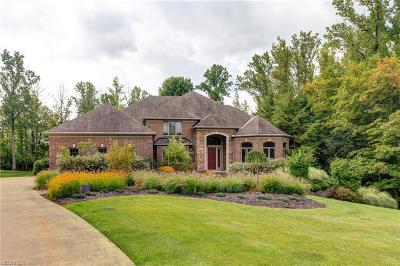 Solon Single Family Home For Sale: 29190 North Park Blvd