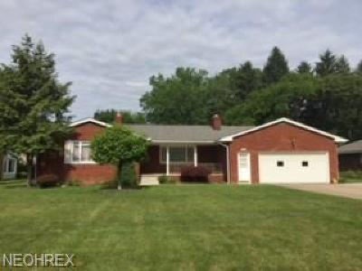 Youngstown Single Family Home For Sale: 6654 Ron Park Pl