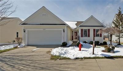 Brunswick Single Family Home For Sale: 4278 Cory Ct