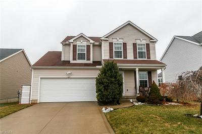 Wadsworth Single Family Home For Sale: 1427 Brentfield Dr