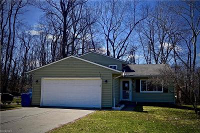 Painesville OH Single Family Home For Sale: $139,000