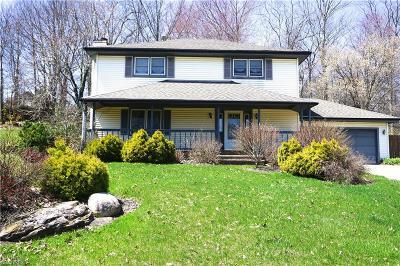 Twinsburg Single Family Home For Sale: 1118 Waldo Way