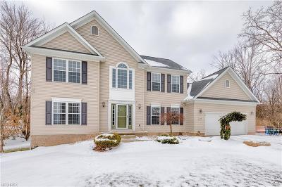 Twinsburg Single Family Home For Sale: 2114 Moorland Dr