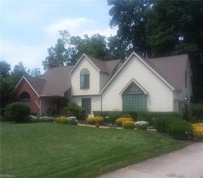 Youngstown Single Family Home For Sale: 7639 Winterberry Dr