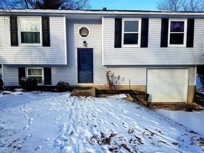 Medina Single Family Home For Sale: 225 Overlook Dr