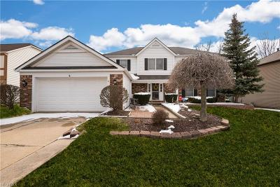 Strongsville Single Family Home For Sale: 18391 Admiralty Dr