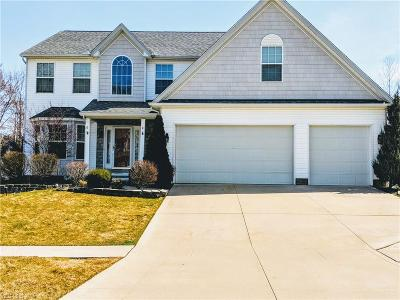 Painesville Township Single Family Home For Sale: 875 Outrigger Cv