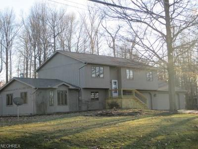 Boardman Single Family Home For Sale: 359 Maple Ave