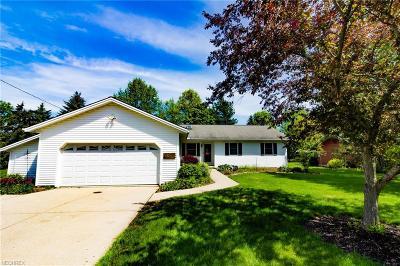 North Royalton Single Family Home For Sale: 11562 Boston Rd