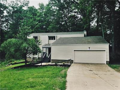 Brecksville Single Family Home For Sale: 10090 Deer Run