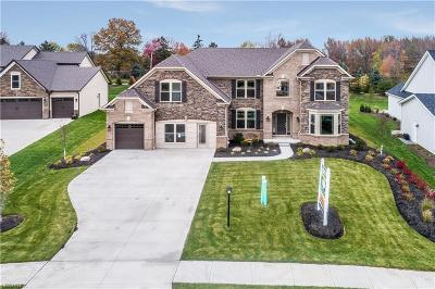 Strongsville Single Family Home For Sale: 22380 Valleybrook Ln