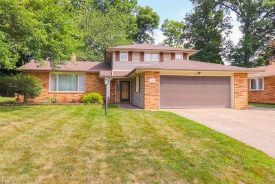 Seven Hills Single Family Home For Sale: 853 Meadview Dr