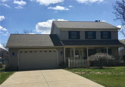 Wadsworth Single Family Home For Sale: 673 Hillcrest Dr
