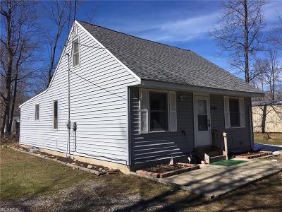 Ashtabula County Single Family Home For Sale: 4869 Linda Dr