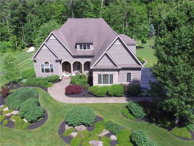 Chagrin Falls Single Family Home For Sale: 16277 Snyder Rd
