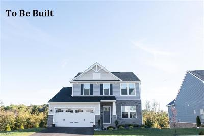Twinsburg Single Family Home For Sale: 3601 Shady Timber Dr