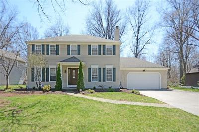 Avon Lake Single Family Home For Sale: 32315 Stoney Brook Dr