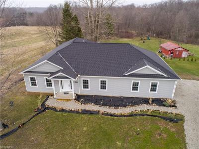Aurora Single Family Home For Sale: 987 Page Road