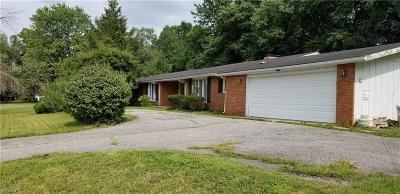 Lake County Single Family Home For Sale: 7503 Chillicothe Rd