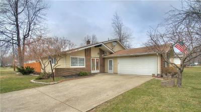Mentor Single Family Home For Sale: 7651 Ohio St