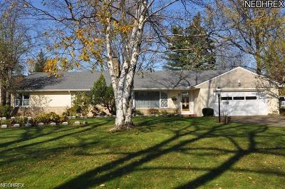 Bay Village, Rocky River Single Family Home For Sale: 30234 Wolf Rd