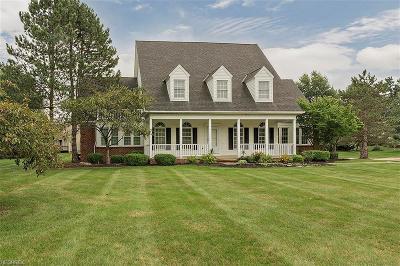 Solon Single Family Home For Sale: 6851 Mayapple Cir