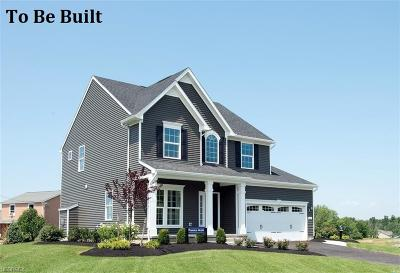 North Ridgeville Single Family Home For Sale: 9327 Nash Ln