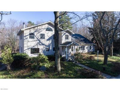 Summit County Single Family Home For Sale: 987 North Hametown Rd